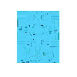 Image of reactJS